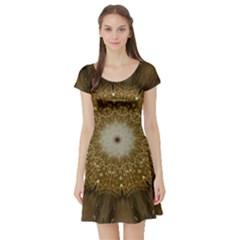 Elegant Festive Golden Brown Kaleidoscope Flower Design Short Sleeve Skater Dress by yoursparklingshop