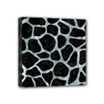 SKIN1 BLACK MARBLE & ICE CRYSTALS Mini Canvas 4  x 4