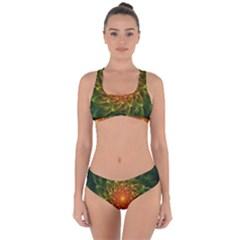 Beautiful Orange-green Desert Cactus Fractalspiral Criss Cross Bikini Set by jayaprime