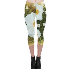 Summer Anemone Sylvestris Capri Leggings  by Celenk