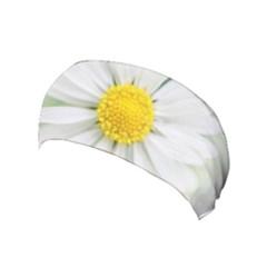 Art Daisy Flower Art Flower Deco Yoga Headband by Celenk