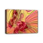 Arrangement Butterfly Aesthetics Mini Canvas 7  x 5