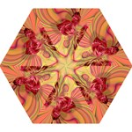Arrangement Butterfly Aesthetics Mini Folding Umbrellas