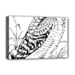 Animal Bird Forest Nature Owl Deluxe Canvas 18  x 12