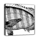 Animal Fish Ocean Sea Mini Canvas 8  x 8