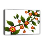 Flower Branch Nature Leaves Plant Deluxe Canvas 18  x 12