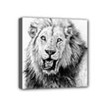 Lion Wildlife Art And Illustration Pencil Mini Canvas 4  x 4