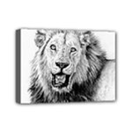 Lion Wildlife Art And Illustration Pencil Mini Canvas 7  x 5