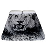 Lion Wildlife Art And Illustration Pencil Fitted Sheet (Queen Size)
