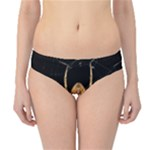 Insect Macro Spider Colombia Hipster Bikini Bottoms