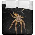 Insect Macro Spider Colombia Duvet Cover Double Side (King Size)