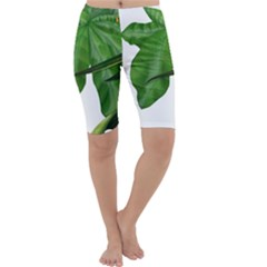 Plant Berry Leaves Green Flower Cropped Leggings  by BangZart