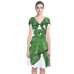 Plant Berry Leaves Green Flower Short Sleeve Front Wrap Dress by BangZart