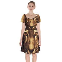 Cat Tiger Animal Wildlife Wild Short Sleeve Bardot Dress by Celenk