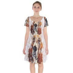Dog Basset Pet Art Abstract Short Sleeve Bardot Dress by Celenk