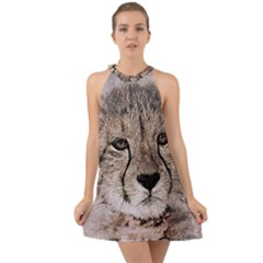 Leopard Art Abstract Vintage Baby Halter Tie Back Chiffon Dress by Celenk