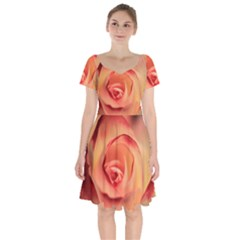 Rose Orange Rose Blossom Bloom Short Sleeve Bardot Dress by Celenk