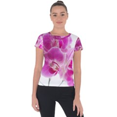 Orchid Phaleonopsis Art Plant Short Sleeve Sports Top  by Celenk