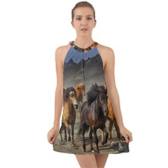 Horses Stampede Nature Running Halter Tie Back Chiffon Dress by Celenk