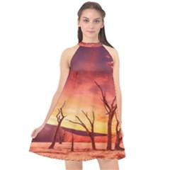 Desert Arid Dry Drought Landscape Halter Neckline Chiffon Dress  by Celenk
