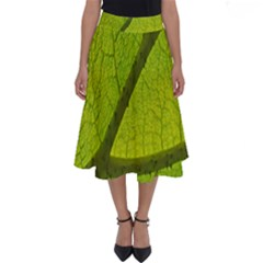 Green Leaf Plant Nature Structure Perfect Length Midi Skirt