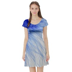 Feather Blue Colored Short Sleeve Skater Dress by Nexatart