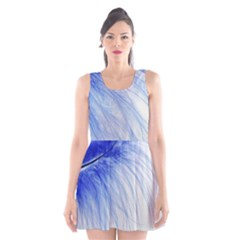 Feather Blue Colored Scoop Neck Skater Dress by Nexatart