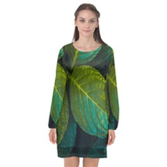 Green Plant Leaf Foliage Nature Long Sleeve Chiffon Shift Dress