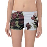 Roses 1802790 960 720 Boyleg Bikini Bottoms