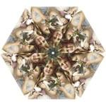 Vintage 1501558 1280 Mini Folding Umbrellas
