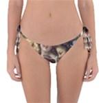 Vintage 1501558 1280 Reversible Bikini Bottom
