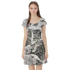 Coquina Shell Limestone Rocks Short Sleeve Skater Dress by Nexatart