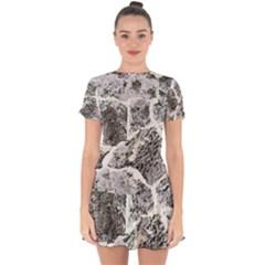 Coquina Shell Limestone Rocks Drop Hem Mini Chiffon Dress by Nexatart