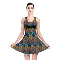 Peacock Feathers Bird Plumage Reversible Skater Dress by Nexatart