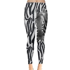 Dark Gray Zebra Print Leggings  by PattyVilleDesigns