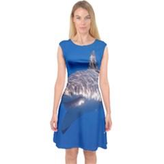 Great White Shark 5 Capsleeve Midi Dress by trendistuff