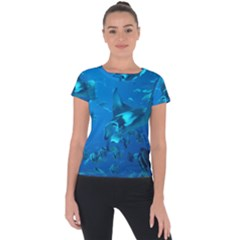 Manta Ray 2 Short Sleeve Sports Top  by trendistuff