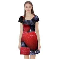 Berries 1 Short Sleeve Skater Dress by trendistuff