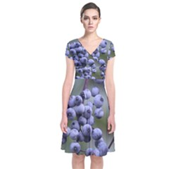 Blueberries 2 Short Sleeve Front Wrap Dress by trendistuff