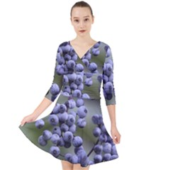 Blueberries 2 Quarter Sleeve Front Wrap Dress by trendistuff