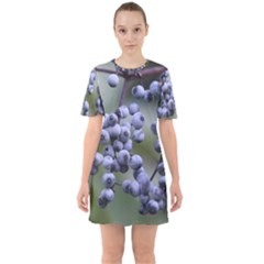 Blueberries 2 Sixties Short Sleeve Mini Dress by trendistuff