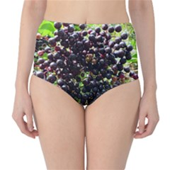 Elderberries High Waist Bikini Bottoms by trendistuff