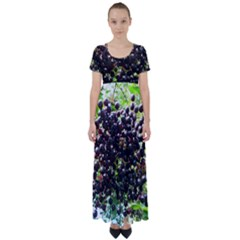 Elderberries High Waist Short Sleeve Maxi Dress by trendistuff