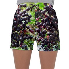 Elderberries Sleepwear Shorts by trendistuff