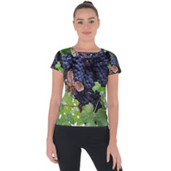 Grapes 3 Short Sleeve Sports Top  by trendistuff