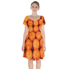 Oranges 1 Short Sleeve Bardot Dress
