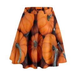 Pumpkins 2 High Waist Skirt by trendistuff