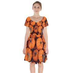Pumpkins 2 Short Sleeve Bardot Dress by trendistuff