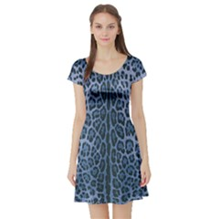 Blue Leopard Print Short Sleeve Skater Dress by CasaDiModa
