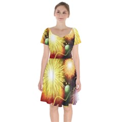 Celebration Colorful Fireworks Beautiful Short Sleeve Bardot Dress by Sapixe